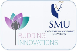 Entrepreneurial Internship Program (EIP) enabled by BI collaboration with Singapore Management Unive