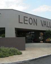 Leon Valley Flat Fee MLS.jpeg