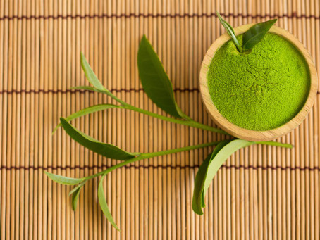 Matcha: What is it? And what are its  benefits?