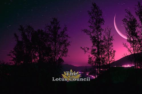 The Lotus Council Playmat - Purple Night 2