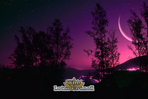 The Lotus Council Playmat - Purple Night