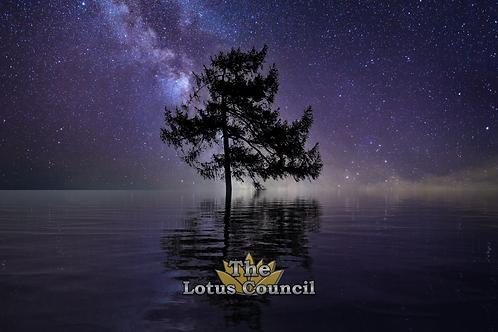 The Lotus Council Playmat - Lake Tree 2