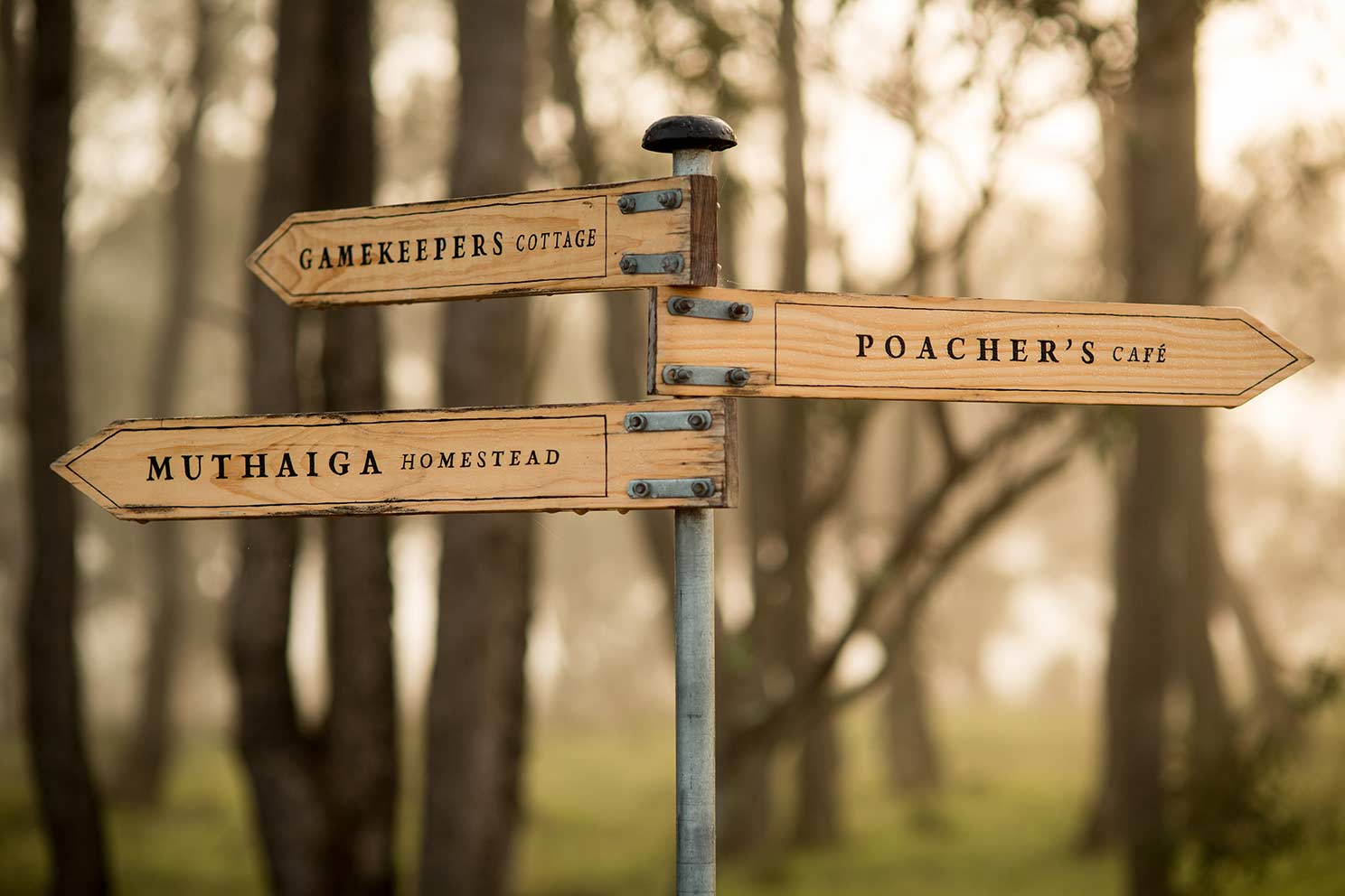 PoachersRidge_WEB-032