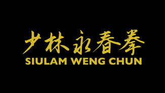 What is the Difference Between Yip Man Wing Chun & SiuLam Weng Chun