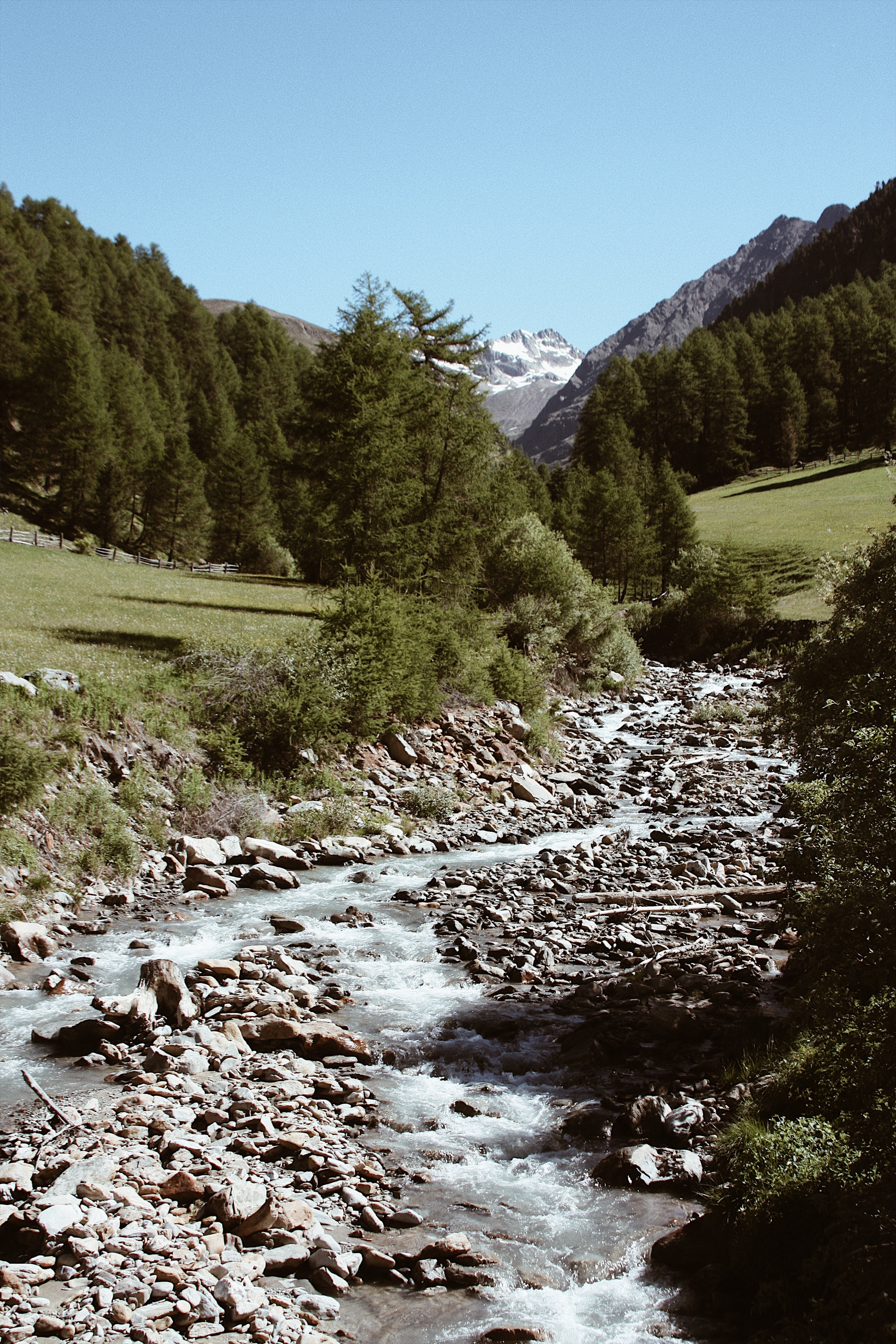 Nature7__Anastasia_Ausserer
