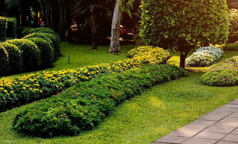 luxury-landscape-design-tropical-garden-
