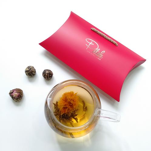 Hario Teapot +  Assorted Blooming Tea (Petite-6 teaball)