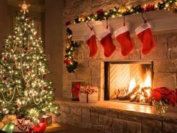 Christmas Concert and Caroling
