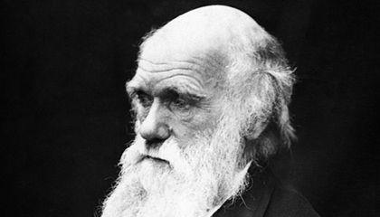 Darwin and his EU Prodigy
