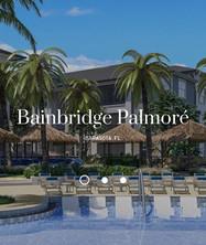 Bainbridge pic.JPG