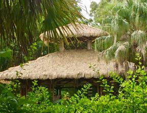 McKee gardens.jpg