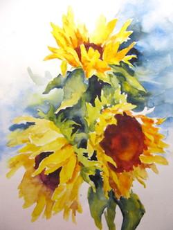 Floral - sunflower