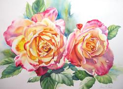 Annas' Roses