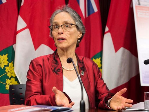 Too much of Ontario's waste is going to landfill: enviro watchdog