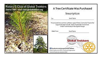Tree Certificate Blank.jpg