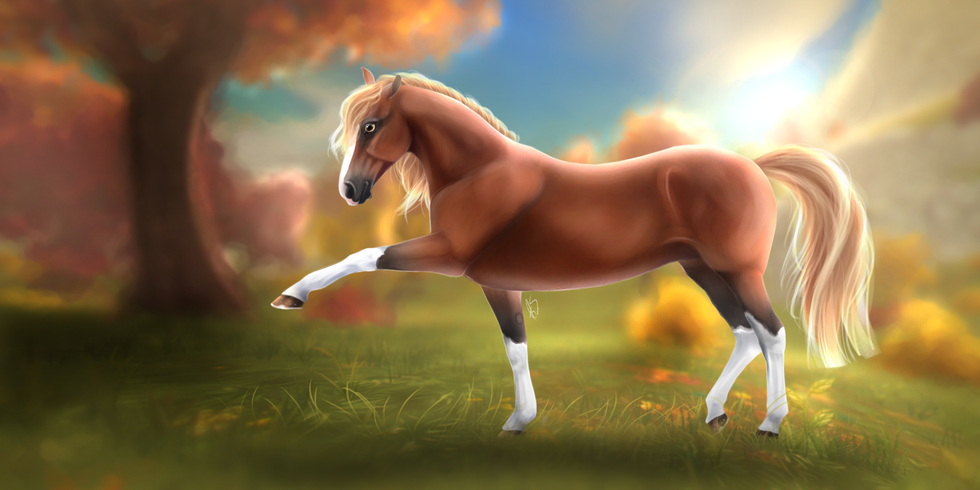 Horse drawed with Playful Style #Autumn