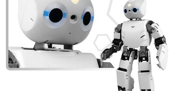 Robotis OP2