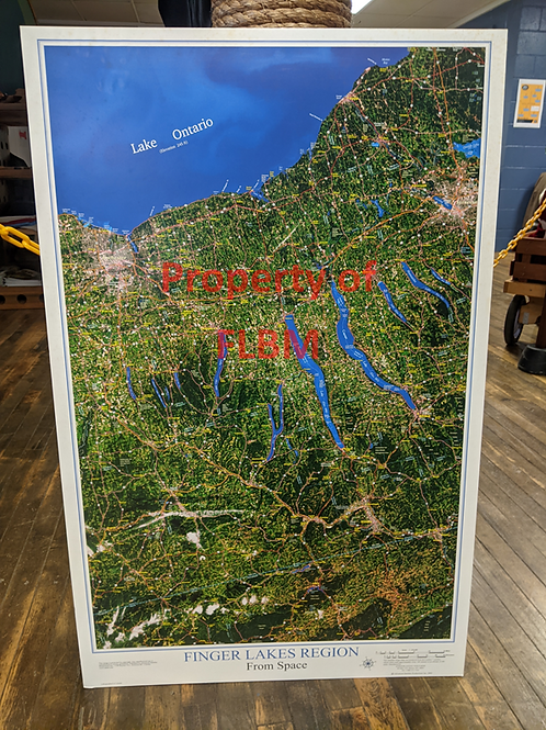 Finger Lakes From Space Poster