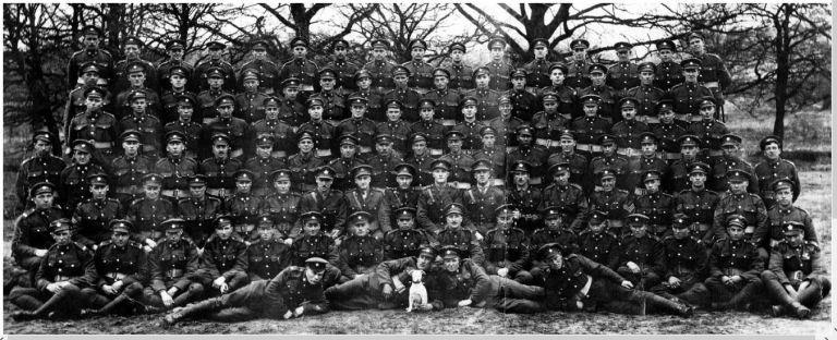 """18th Battalion """"D"""" Company"""