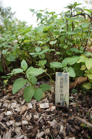 Marque-plante 2€