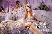 alice + olivia_thumbnail.jpg