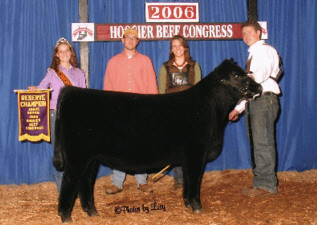 Res. Champ Calf 06 Royal  Res Angus heif