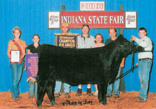 06 Res Champ Angus In. state fair.jpg