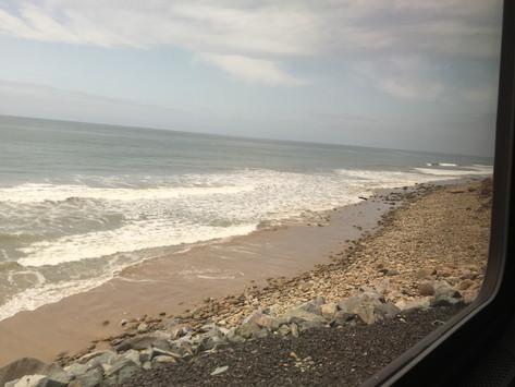 Day 7: Train day