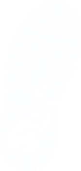 Solid-BootsOnGroundLogo-White.png