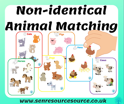 Non-Identical Animal Matching