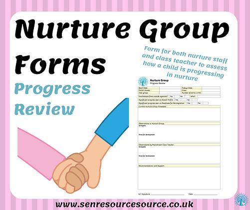 Nurture Group Progress Review