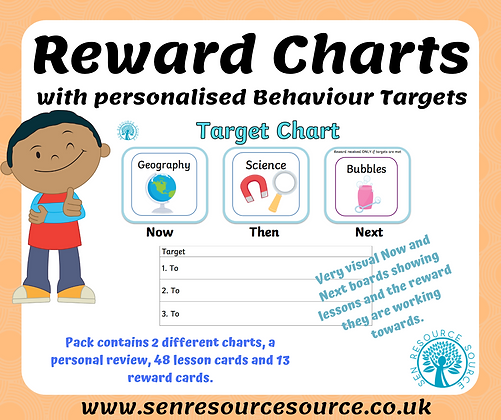 Now and Next Target Behaviour Charts