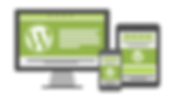 orlando-wordpress-websites.png