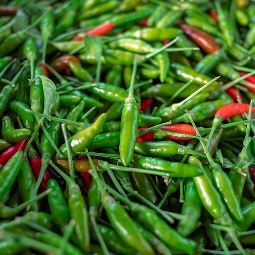 Green Thai Chili Pepper
