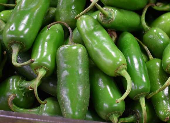 Jalapeño Chilli Pepper