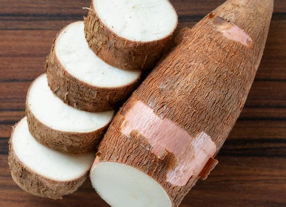 Cassava/Yuca