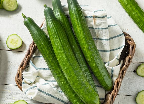 English cucumber