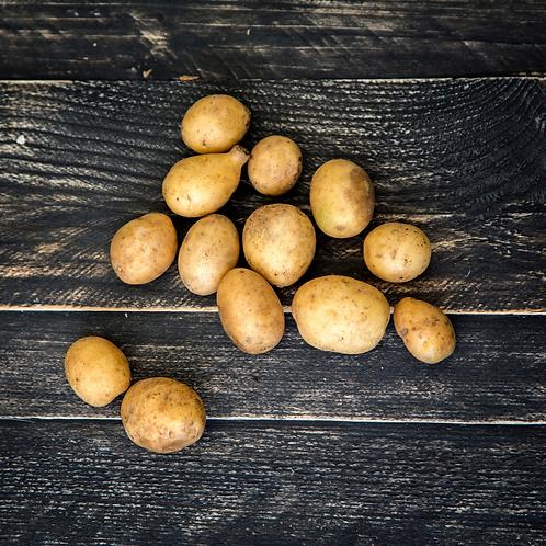 Mini Yellow Potato