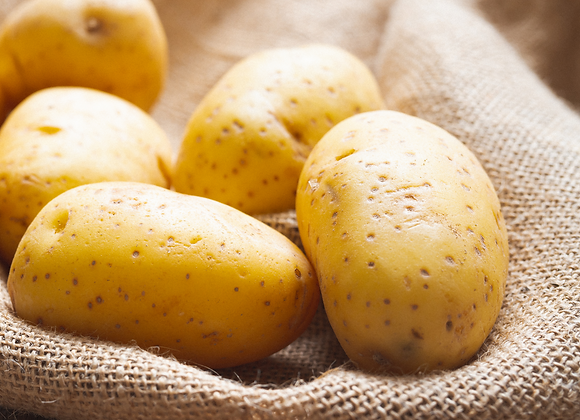 Yellow Flush Potato