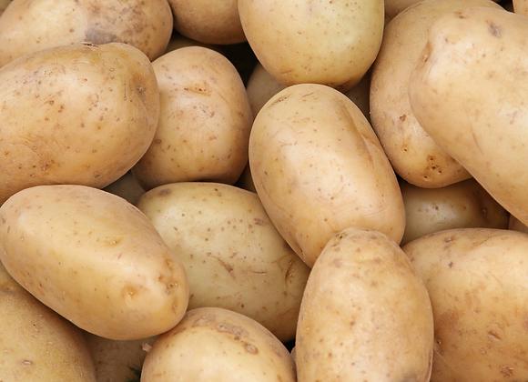 White Potato 10 lbs