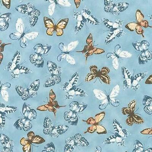 GARDEN STUDIES-DUSTY BLUE BUTTERFLIES