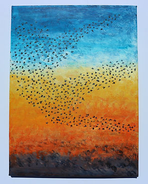 Sunset murmuration.JPG