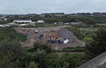 Japanese knotweed at Scilly dump