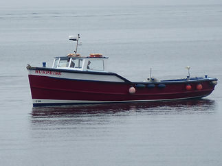The Surprise safely back in harbour on Sunday
