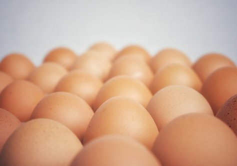Farm Fresh Organic Eggs by the Dozen