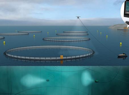 Tomorrows aquaculture facilities
