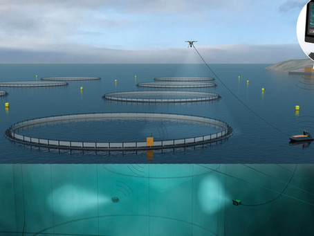 Tomorrows aquaculture facilities