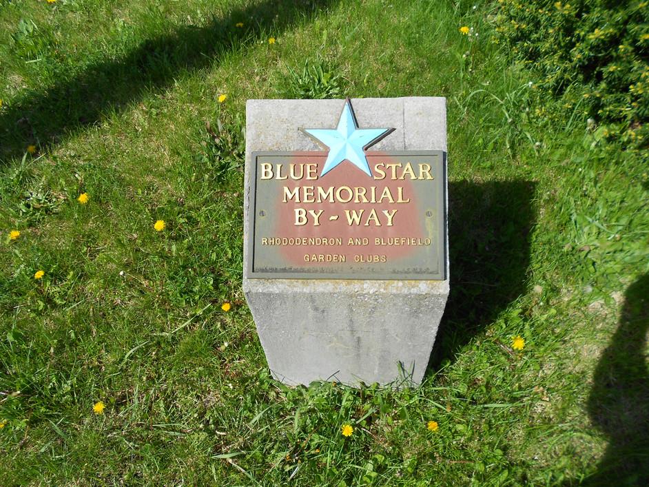 The Blue Memorial Star