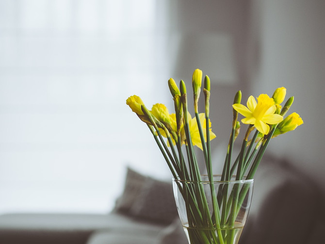 4 Easy-to-Follow Tips For Buying A Home This Spring
