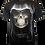 Thumbnail: Death Shroud